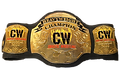 heavyweight title png.png