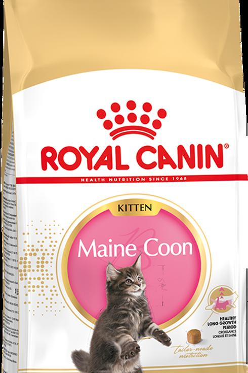 Сухой корм RC для котят породы мейн-кун в возрасте до 15 месяцев