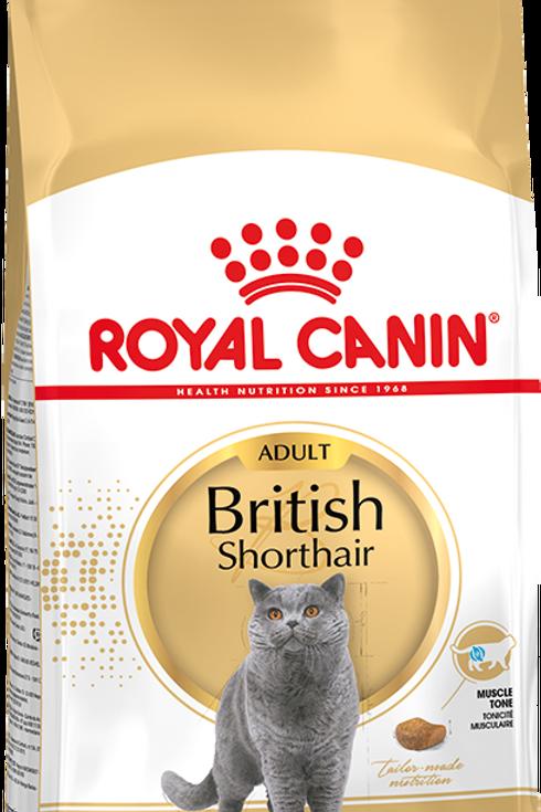 Сухой корм RC для кошек британской короткошерстной породы старше года