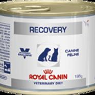 Влажный корм Royal Canin Recovery для собак и кошек в период анорексии