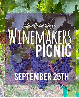 Winemakers Picnic for 2