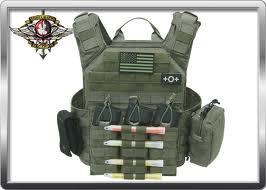 Shellback Tactical Banshee Plate Carrier