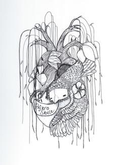 Illustration for Pajaro Sauce