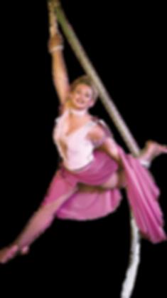 Tina.Pink.Circus.Web.png