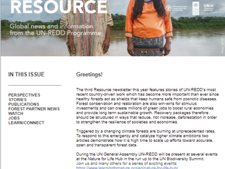The Third Resource Newsletter now available!
