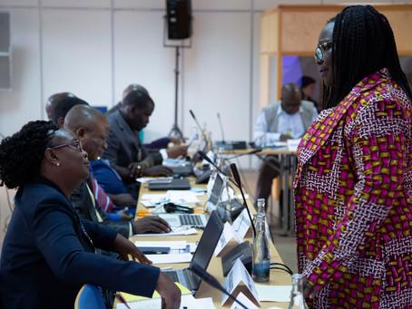 11 Africa countries exchange knowledge on Jurisdictional REDD+ during the 2018 UN-REDD Regional Exch