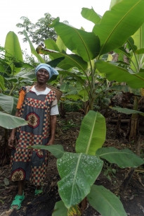 Equatorial Guinea launches its REDD+ National Investment Plan