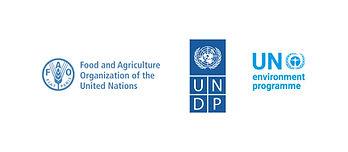 __UN-REDD_partenr logo_EN.jpg