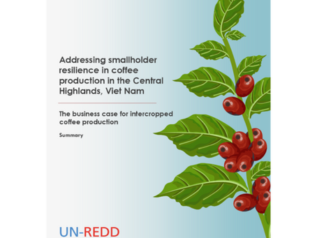 Addressing smallholder resilience in coffee production in the Central Highlands, Viet Nam