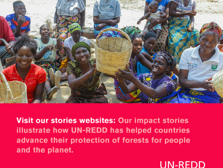 UN-REDD Stories page now available!