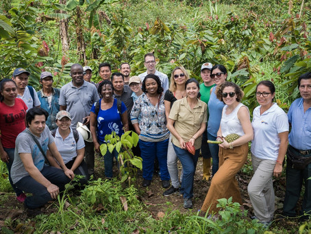 Ghana and Ecuador partner to advance REDD+ implementation