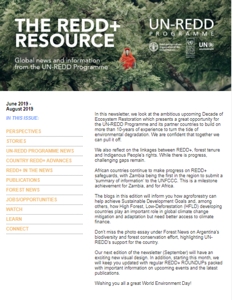 June/ August 2019 edition of The REDD+ Resource now available!   UN
