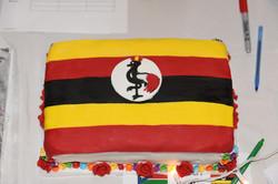 UgandaFlagCake