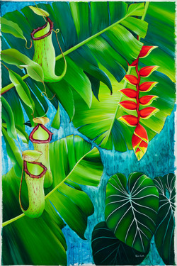 Lobster Claw, Pitcher Plant, with Banana