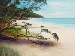 the sheltering tree orakawa bay nz