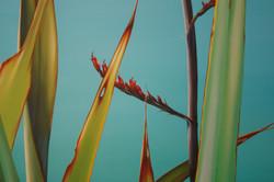 Through the flax detail.