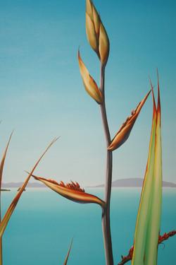 Through the flax detail