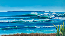 Papamoa Beach Comission