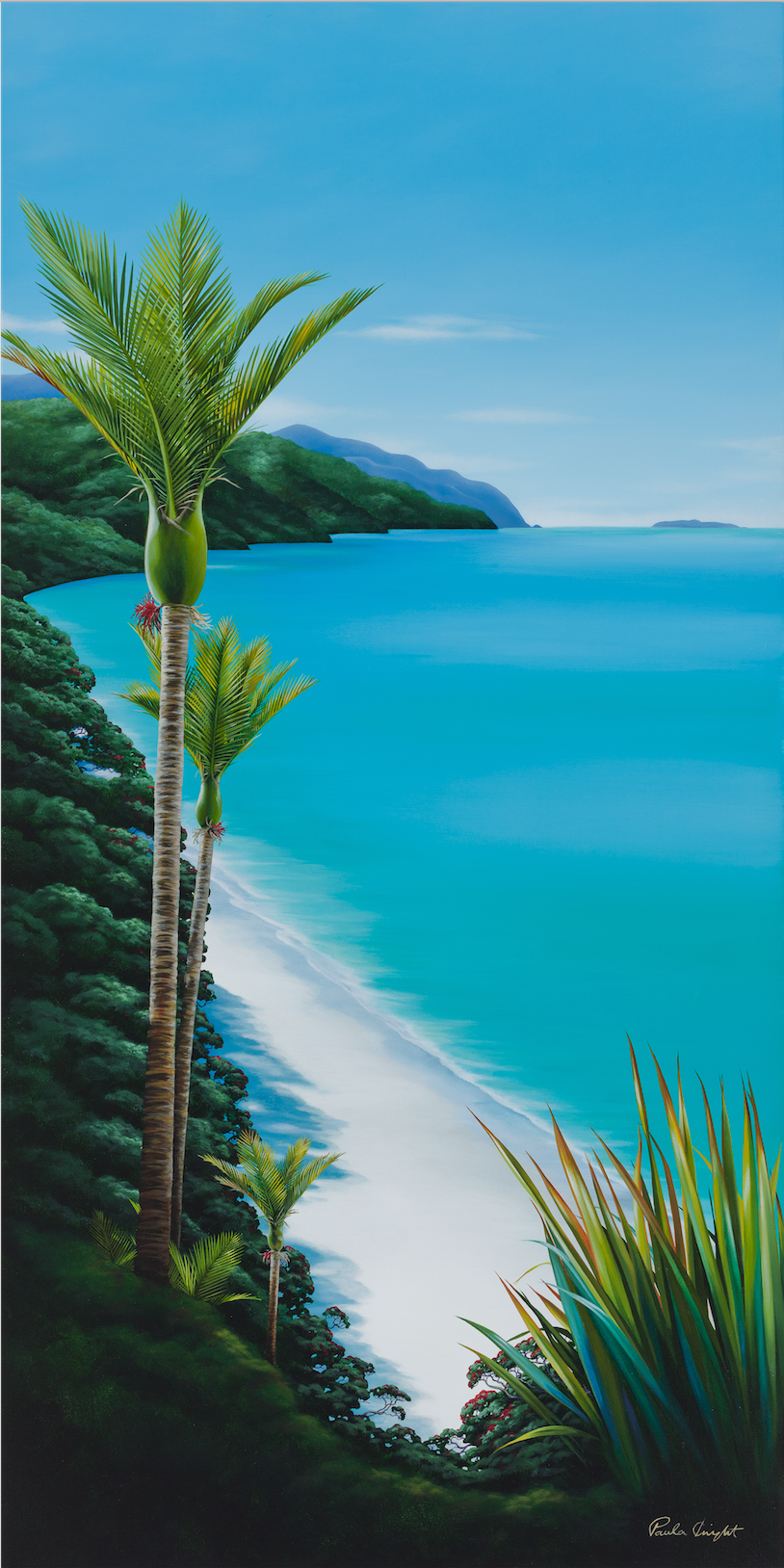 'Nikau on the Coast'