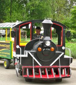 Chilliwack Fraser's Rotary Train