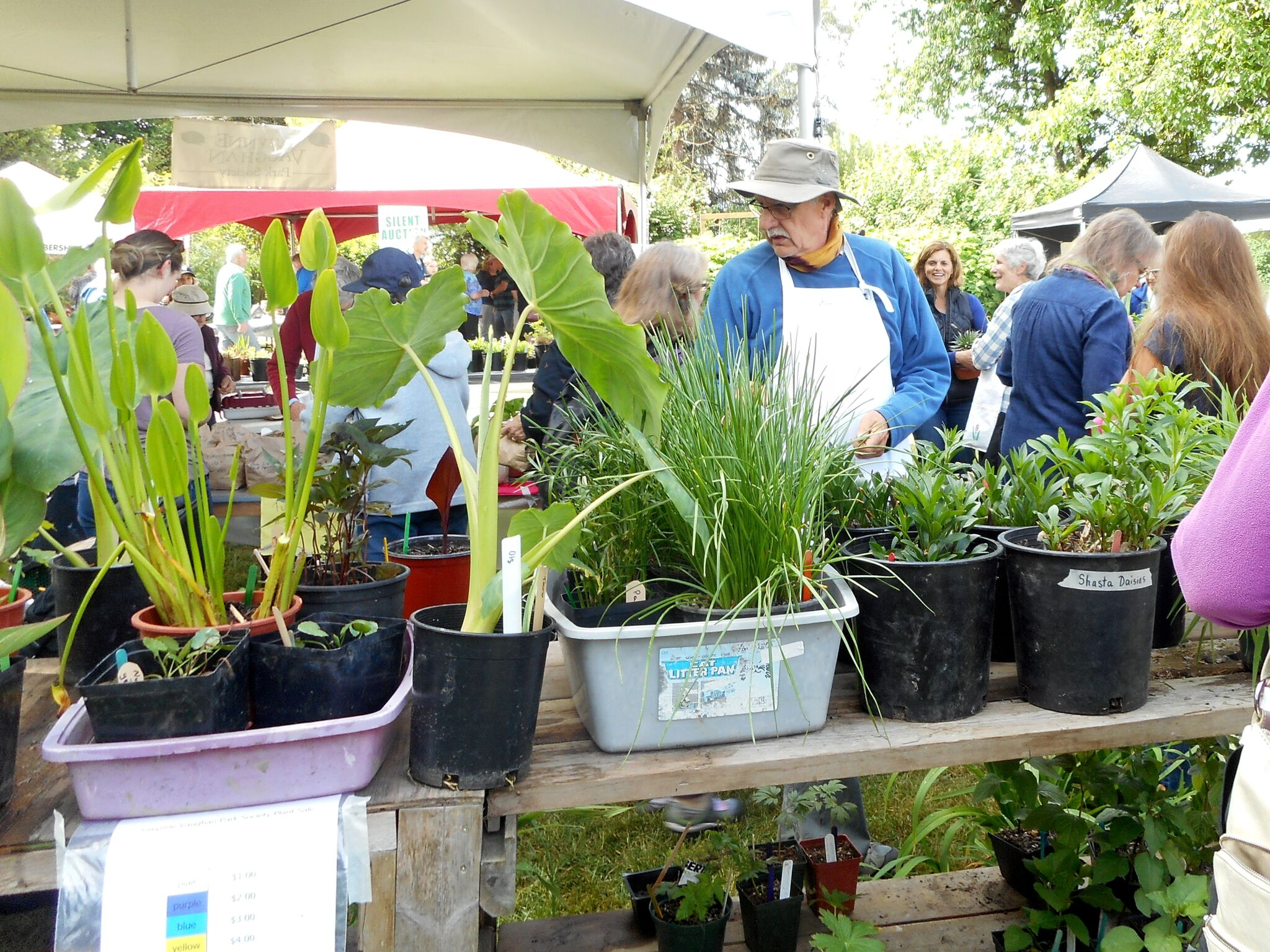 GVP plant sale 2018 (13)_preview