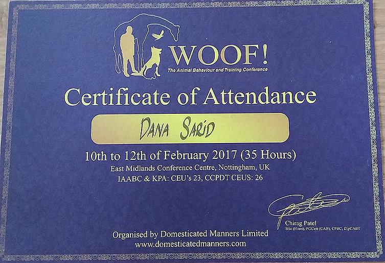 תעודת השתתפות בסמינר בין לאומי באנגליה בהתנהגות כלבים