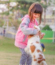 כלב קאווליר קופץ על ילדה