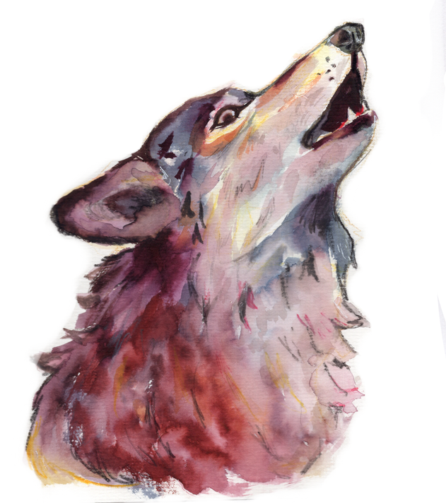 20._howl_husko_preview_edited