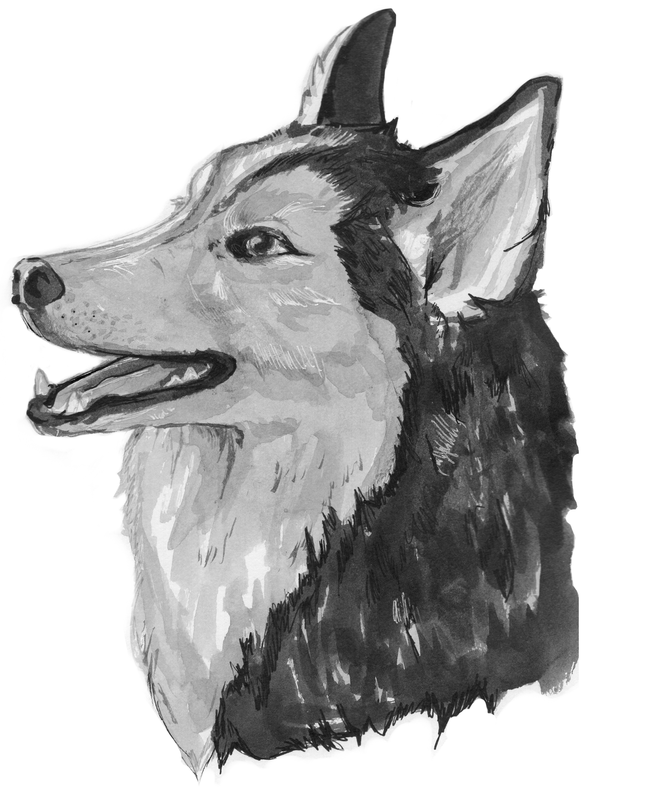 7._husko_preview_edited