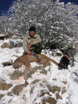 killed lion