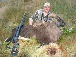 frank_cole_tahr_consultant_the_draw