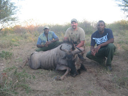 frank_cole_wildbeest_consultant_the_draw