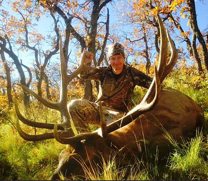 2 Day Guided Elk Hunts in New Mexico