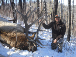 frank_cole_elk_consultant_the_draw