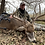 Thumbnail: Kansas Whitetail Guided Hunts