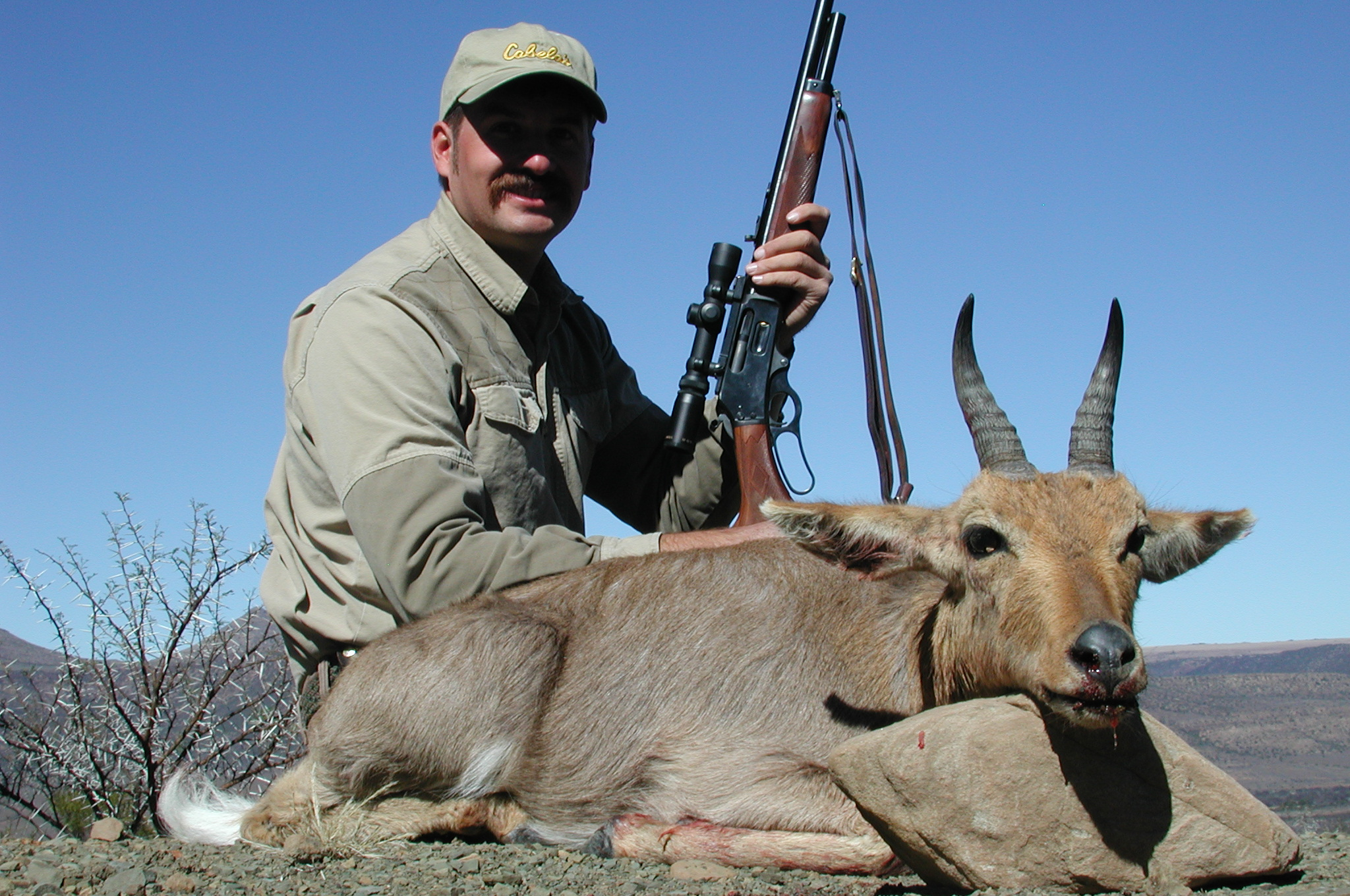 Frank_cole_reedbuck_consultant_the_draw.