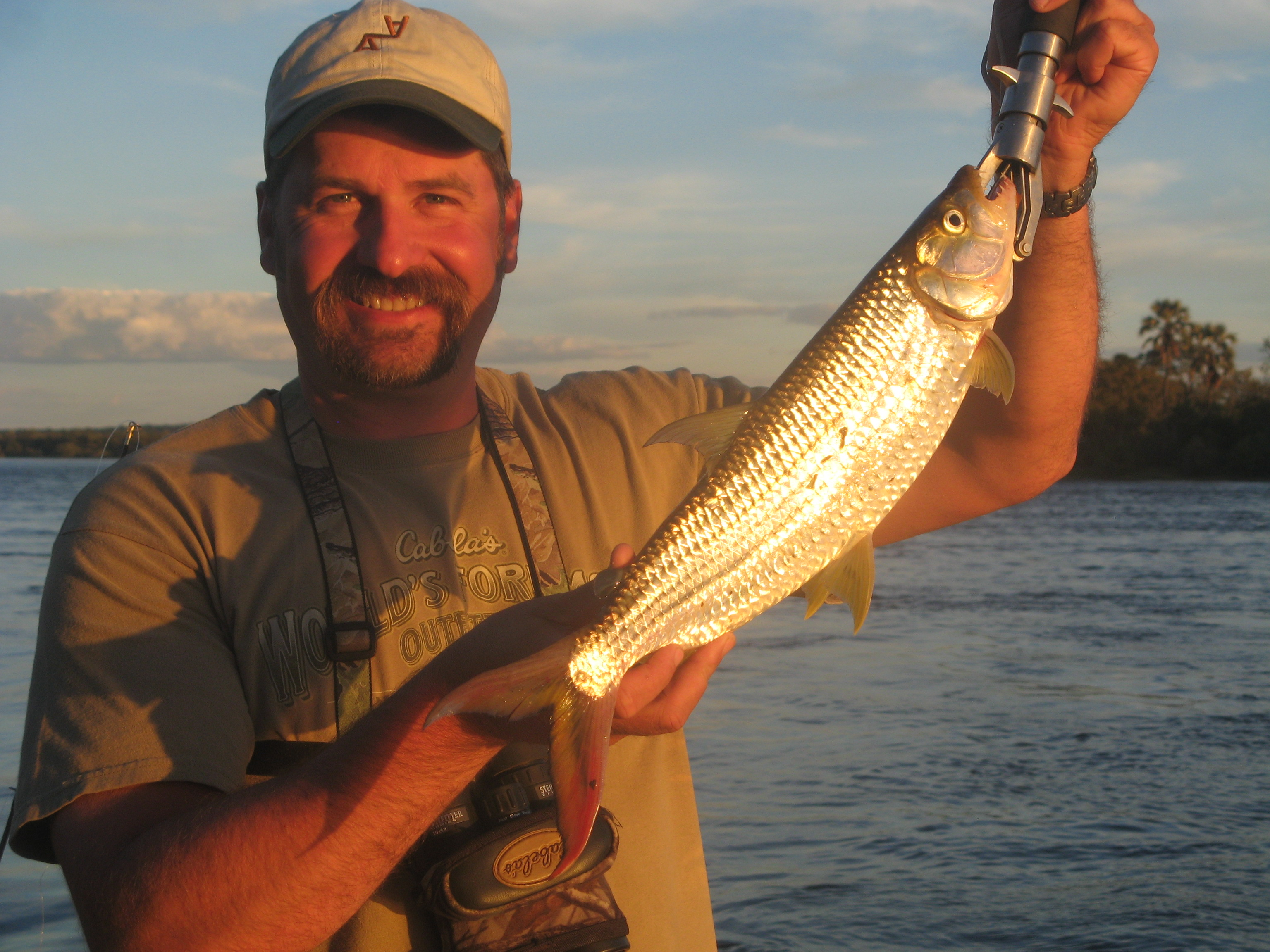 frank_cole_tiger_fish_consultant_the_dra