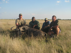 frank_cole_blue_wildebeest_consultant_th