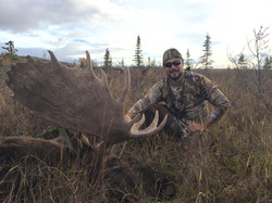 Moose Yukon
