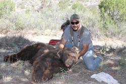 Bear Capture Yogi
