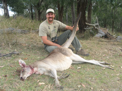 frank_cole_kangaroo_consultant_the_draw.