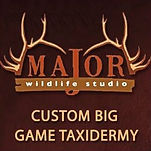 Major Wildlife Studio Logo.jpg