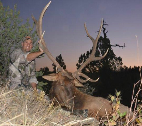 Trophy Elk Hunt in Northern New Mexico