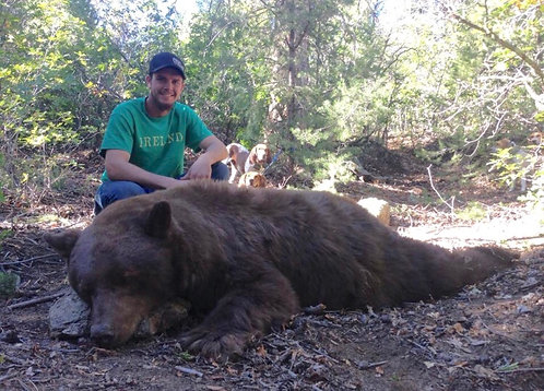 Fully Guided Black Bear Hunting - New Mexico