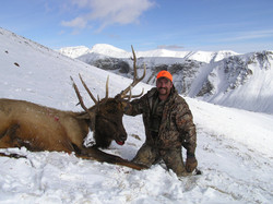 frank_cole_elk_consultant_the_draw_1