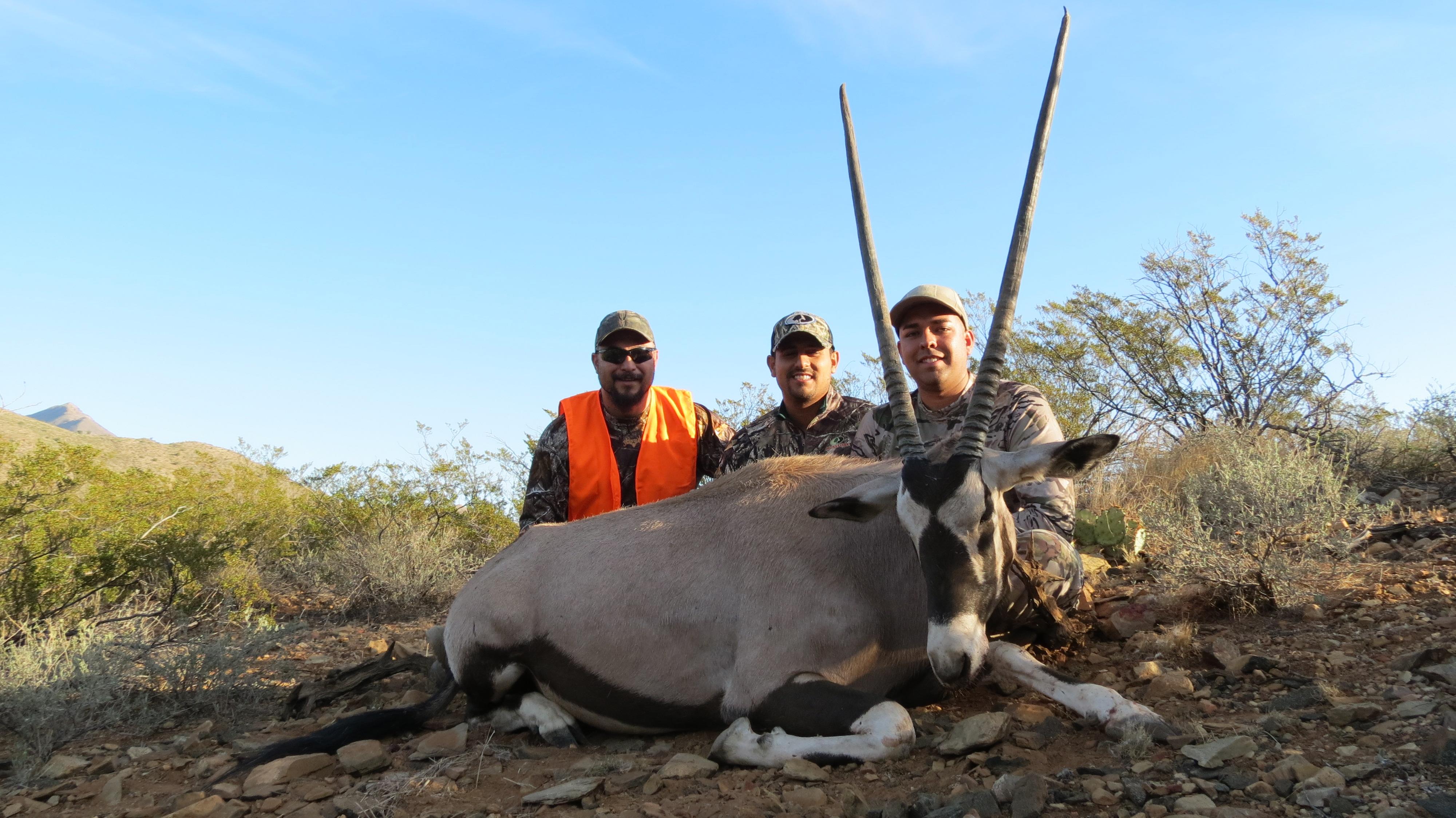 Oryx Cousin Jonathan