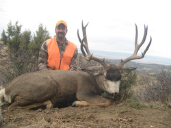 frank_cole_mule_deer_consultant_the_draw