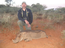 frank_cole_warthog_consultant_the_draw_1