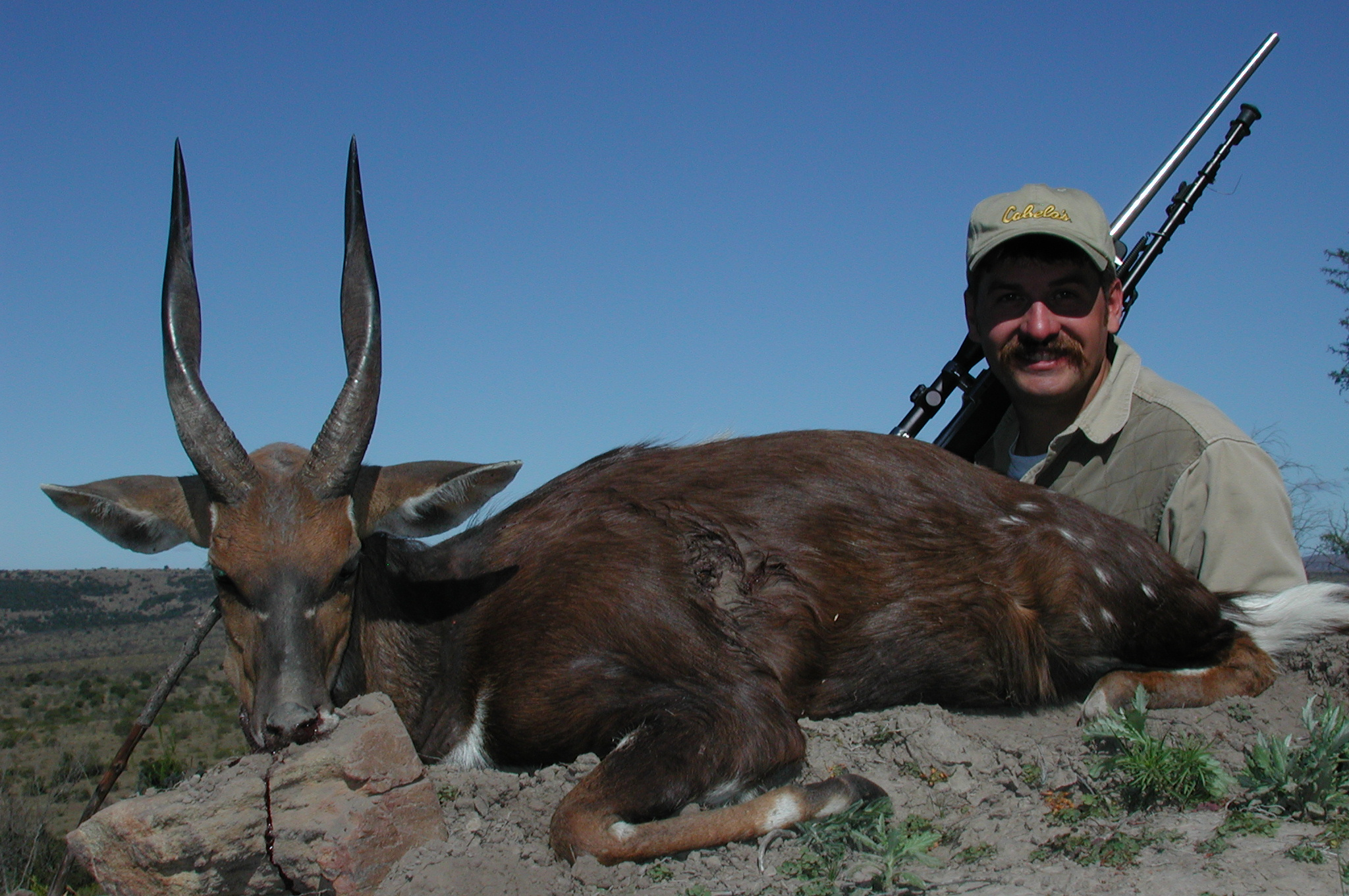 frank_cole_bushbuck_consultant_the_draw.