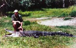frank_cole_alligator_consultant_the_draw